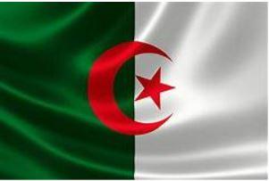 Covid-19, pétrole, politique… l'Algérie face au cauchemar d'une crise multiple