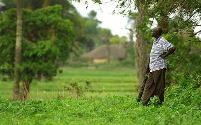 Casamance – tueries de Mandina-Mancagne : retour sur les lieux 23 ans après le drame