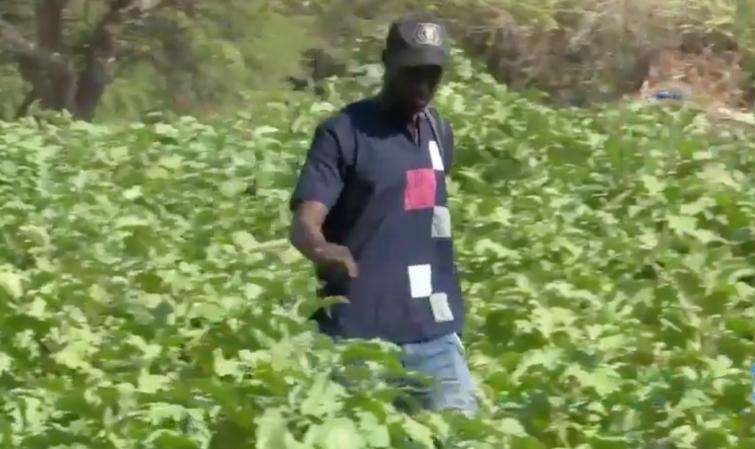 JEUNES ET AGRIPRENEURS: INVESTIR DANS L'AGRICULTURE, AU NOM DE LA NATURE