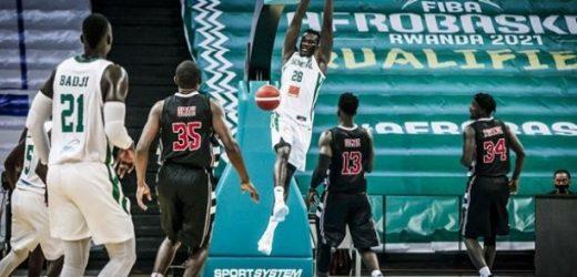 Eliminatoire Afrobasket 2021 : Les Lions trébuchent à la dernière marche