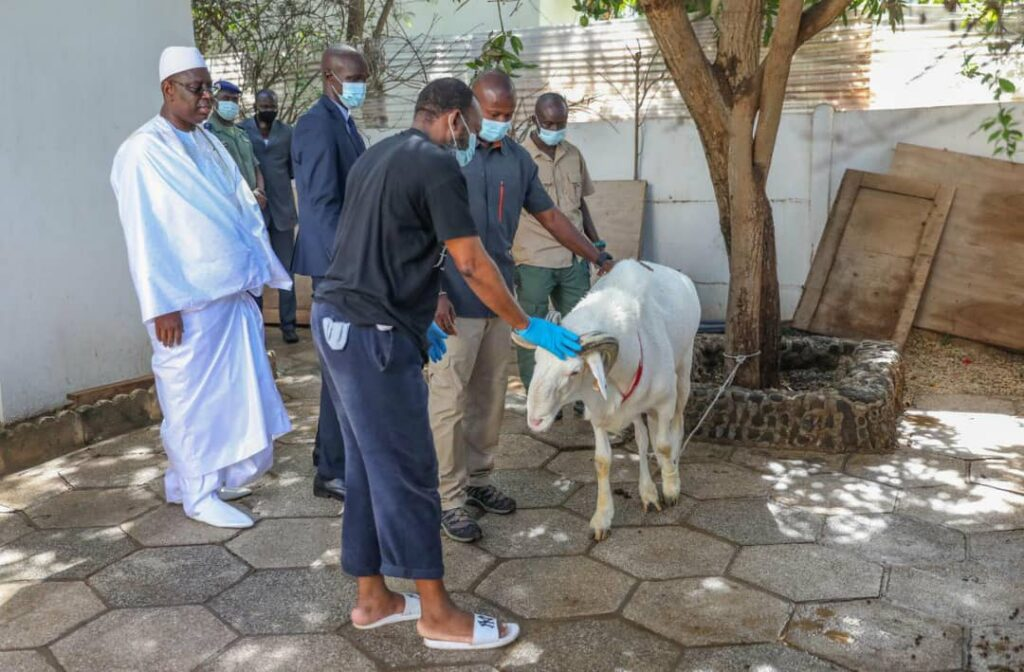 Sénégal : Encore deux dates retenues pour fêter la Tabaski !